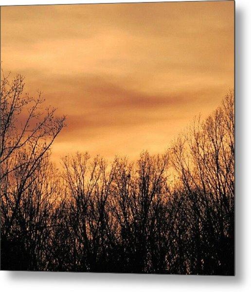 Sunset & Trees Metal Print