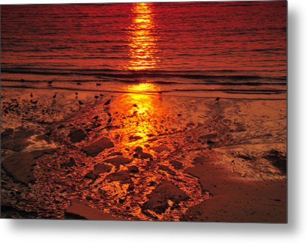 Sunset 4 Metal Print by Jenny Potter