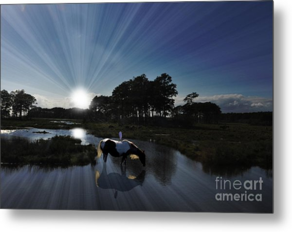 Sunset Assateague Island With Wild Horse Metal Print
