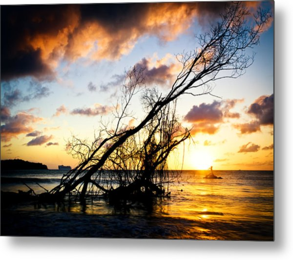 Sunset Drift Wood 2 Metal Print