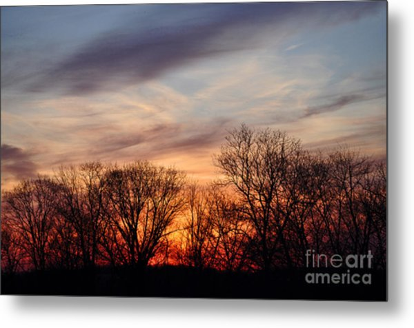 Sunset In The Trees Metal Print