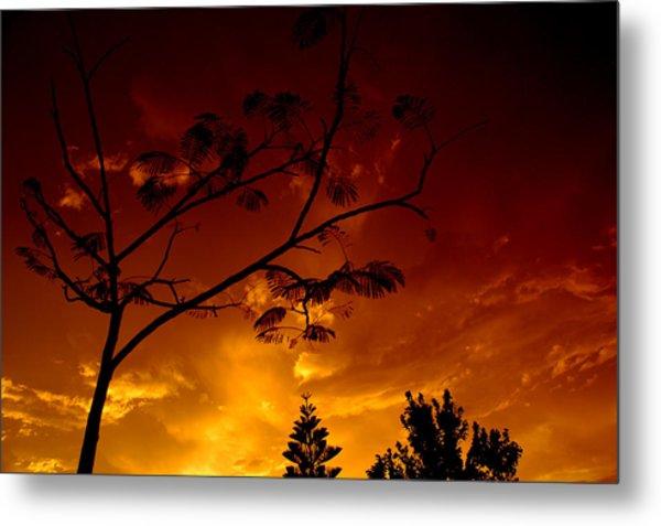 Sunset Over Florida Metal Print