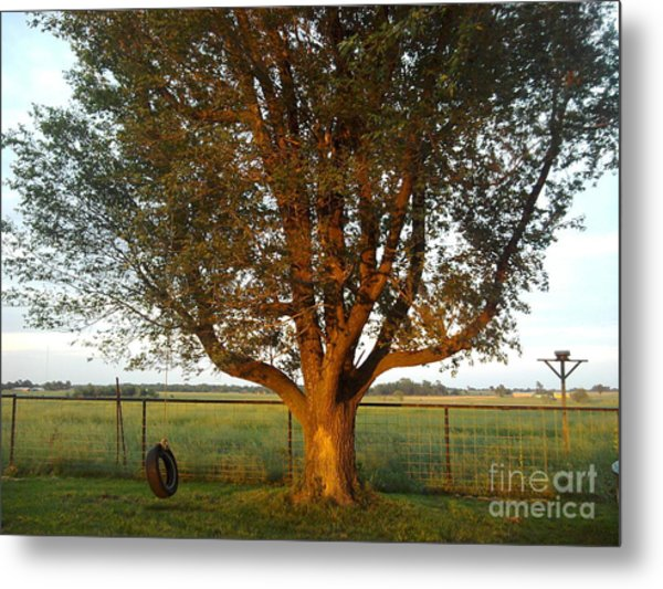 Sunset Tire Swing Metal Print
