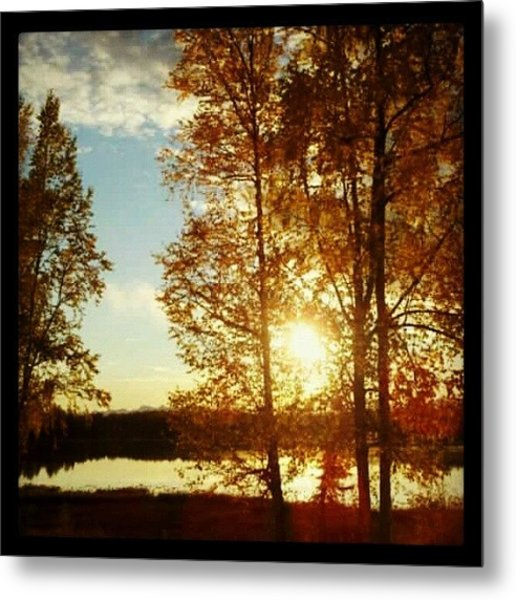 Sunset #trees #sunset Metal Print