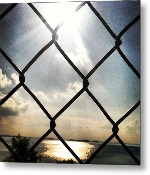 Sunshine In The Afternoon Metal Print