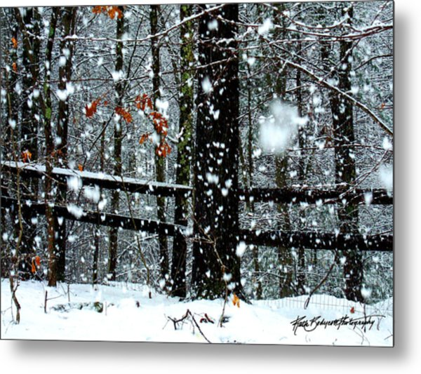 Supersized Snowflakes Metal Print by Ruth Bodycott