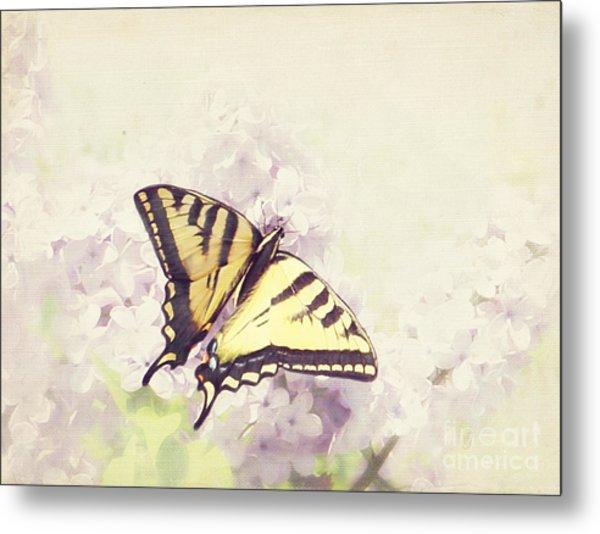 Swallowtail On Lilac Metal Print