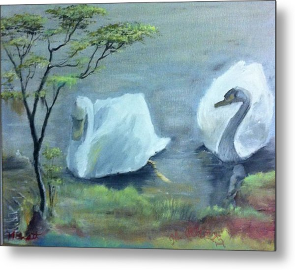 Swan Couple Metal Print by M Bhatt