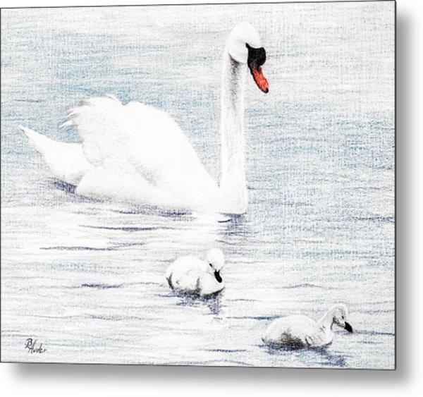 Swan Family Metal Print