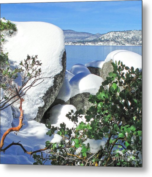 Tahoe Near And Far Metal Print