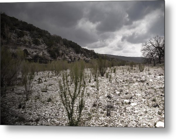 The Bank Of The Nueces River Metal Print
