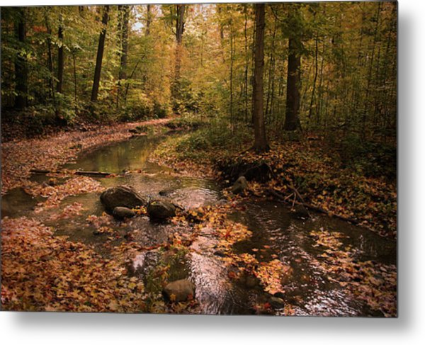 The Brook In The Woods Metal Print