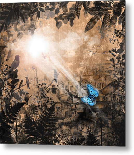 The Butterfly That Thought It Was A Moth Metal Print by Carly Ralph