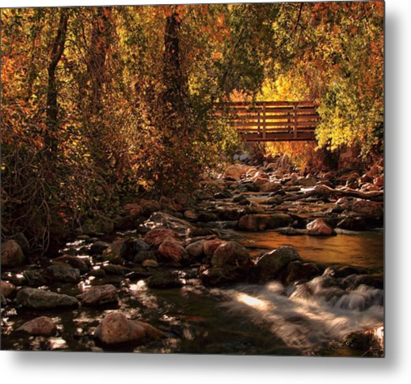 The Color Of Autumn Metal Print by Gene Praag