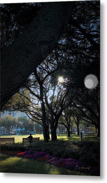 The Day's Reflection Limited Edition Bodecoarts Metal Print