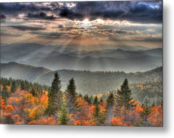The Divine Metal Print by Mary Anne Baker