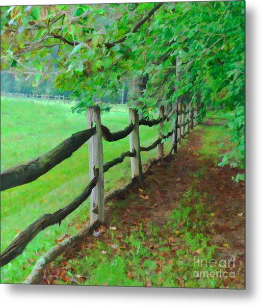 The Fence Path Metal Print