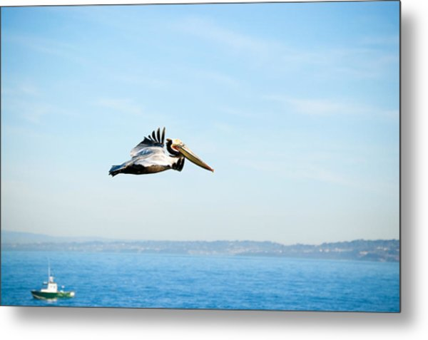 Metal Print featuring the photograph The Flight by Margaret Pitcher