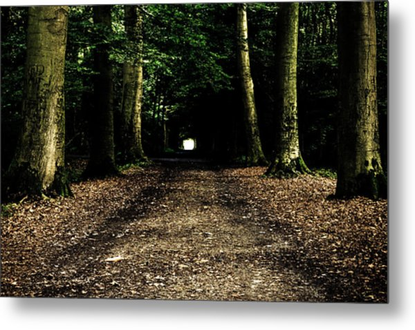 The Forest Tunnel Metal Print