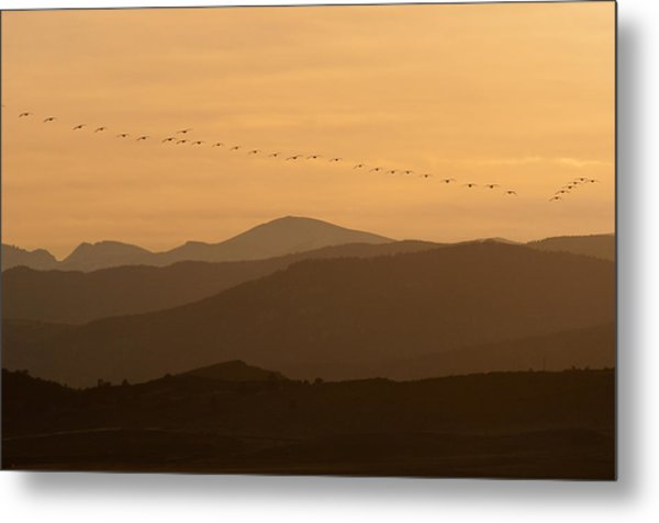 The Formation Metal Print