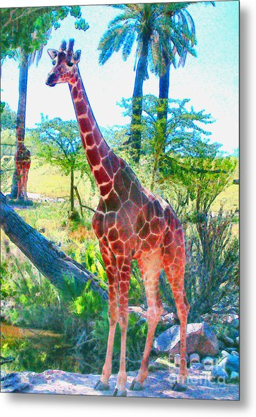The Gentle Giraffe Metal Print