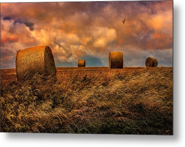 The Hayfield Metal Print