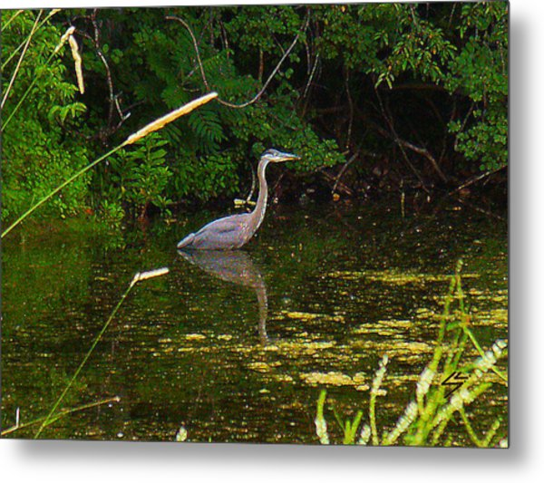 The Heron Metal Print