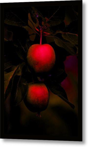 The Inner Light Of Apples Metal Print