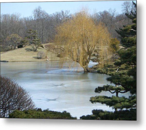 The Landscape In February Metal Print by Dragica Lukovic