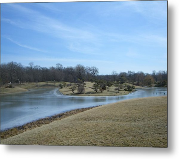 The Landscape In February Part IIi Metal Print by Dragica Lukovic