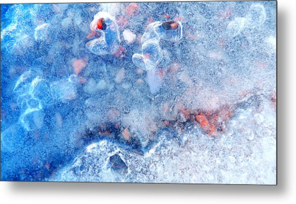 The Last Face Of The Winter Metal Print