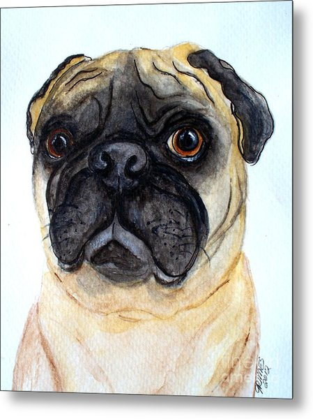 The Little Pug Metal Print