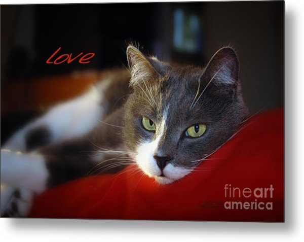 Metal Print featuring the photograph The Look Of Love by Vicki Ferrari