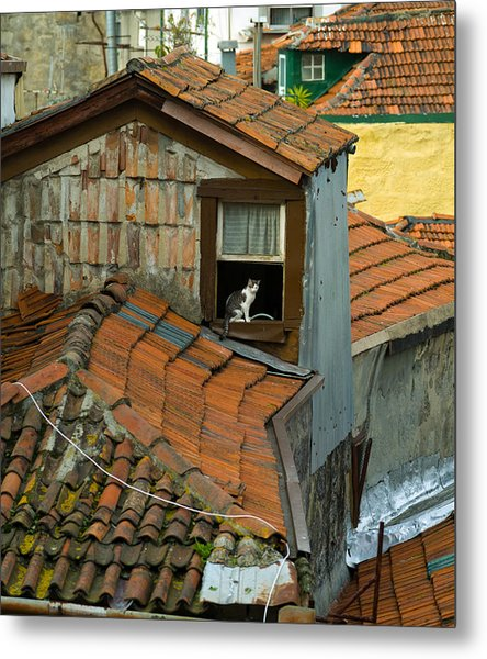 The Lord Of The Roofs Metal Print by Dias Dos Reis