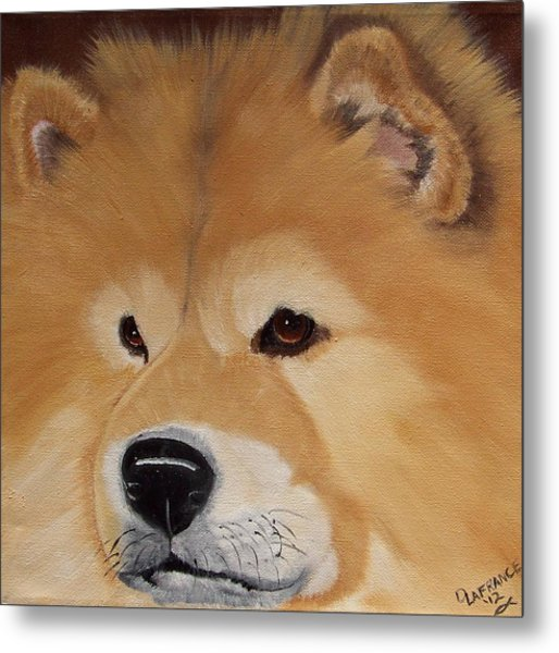 The Noble Chow Metal Print