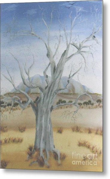 The Old Gum Tree Metal Print by Debra Piro