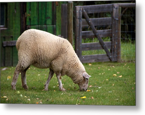 The Original Lawn Mower V2 Metal Print