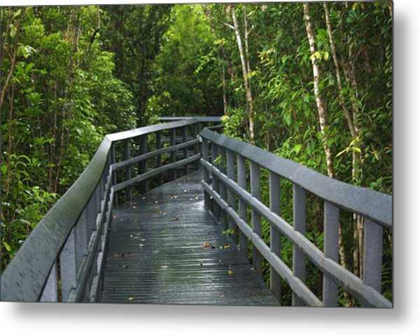 The Path Metal Print by Andrea  OConnell