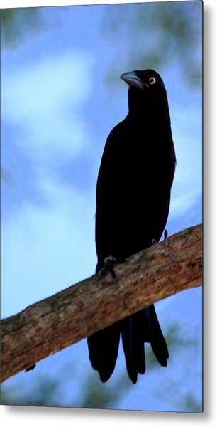 The Raven Metal Print by Lisa Scott