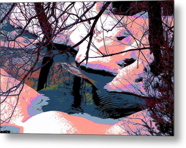 The Shades Of Winter Metal Print by Shirley Mailloux