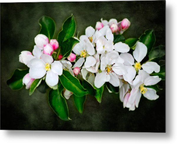 The Smell Off Spring Metal Print