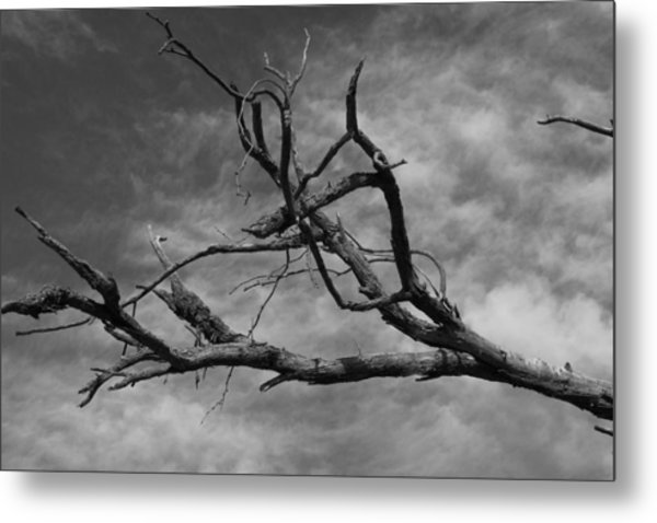 The Spectre Of Drought Metal Print