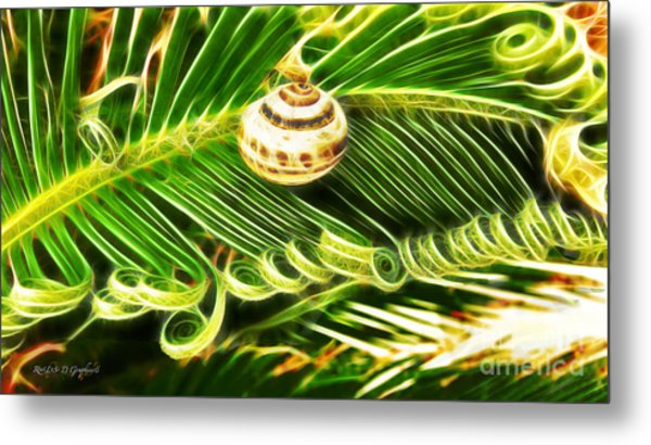 The Spirals Of Life Metal Print