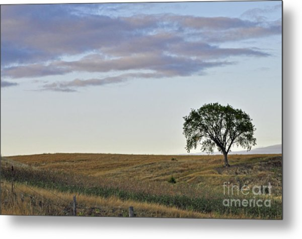 The Tree 2 Metal Print