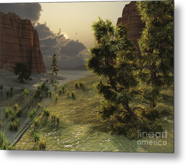 The Trees Are Kissed By Sunlight Metal Print