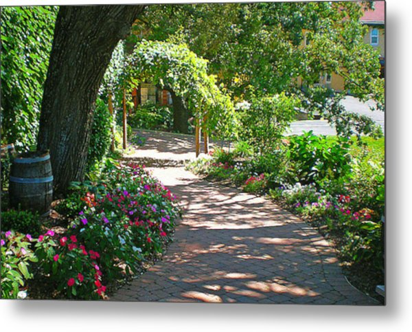 The Vineyard Walk II Metal Print