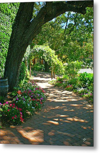The Vineyard Walk Metal Print