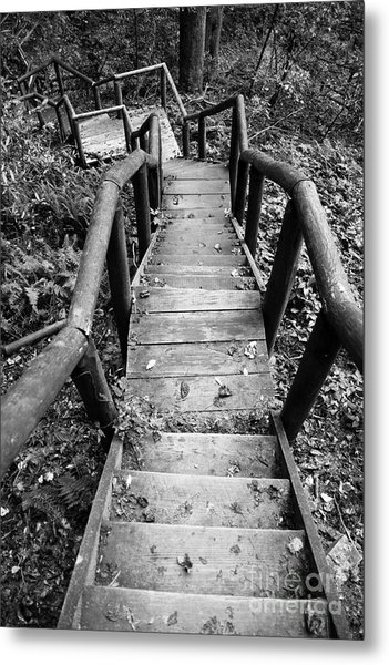 The Way Down Metal Print
