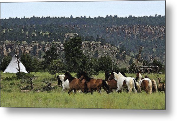 The Wild Mustangs In The Black Hills Metal Print