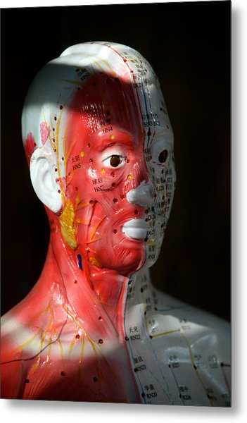 This Is Hurting Metal Print by Jez C Self